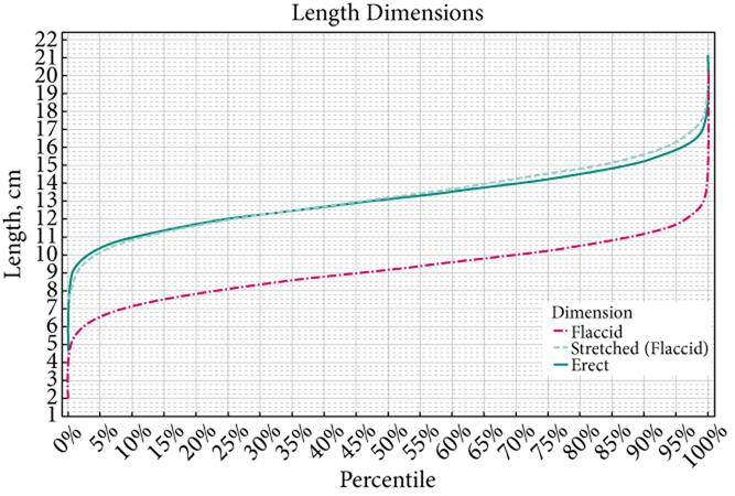 lunghezza-pene2